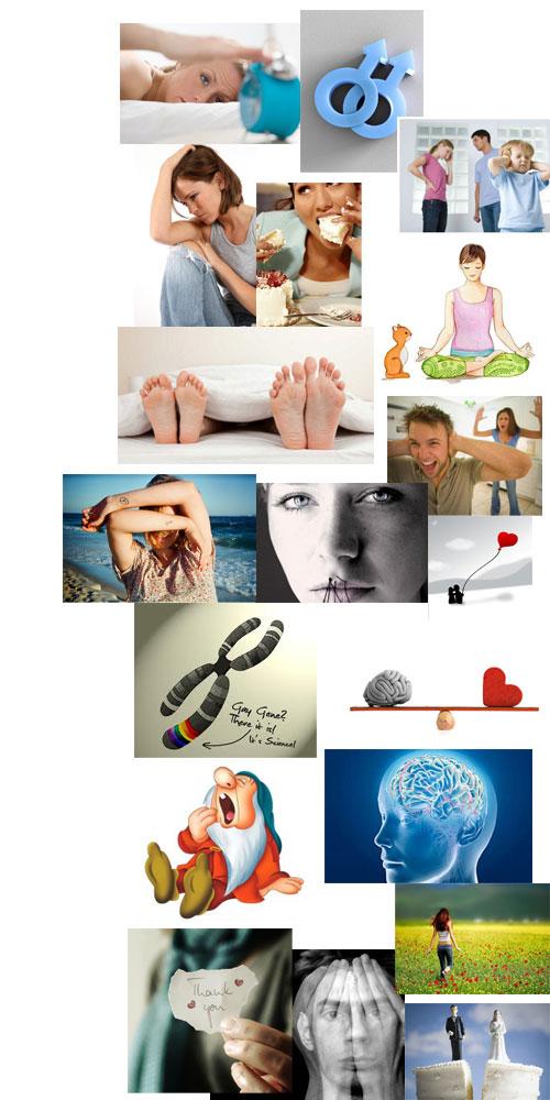 collage1 - Articoli dal web